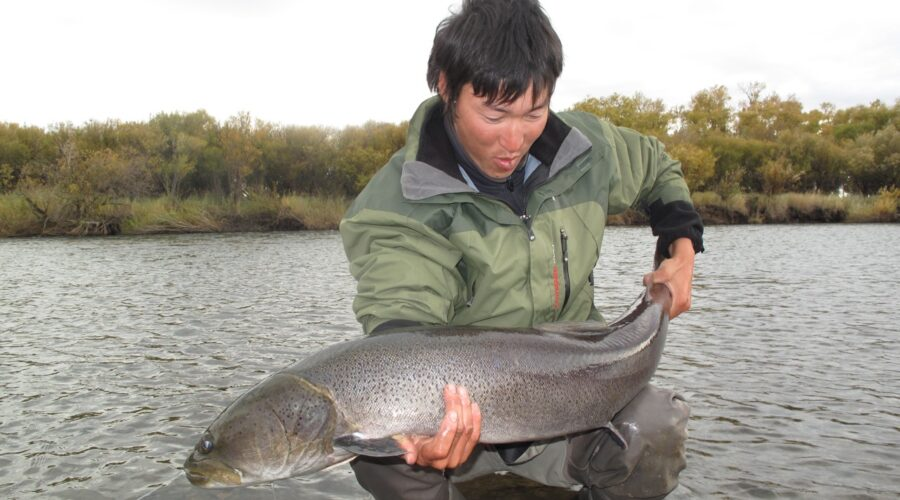 Fly Fishing for Taimen in Mongolia